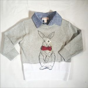Cat and jack rabbit sweater with bowtie monocle